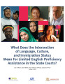 What Does the Intersection of Language, Culture, and Immigration Status Mean for Limited English Proficiency...